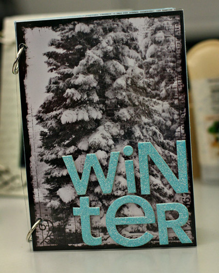 Winterbookcover