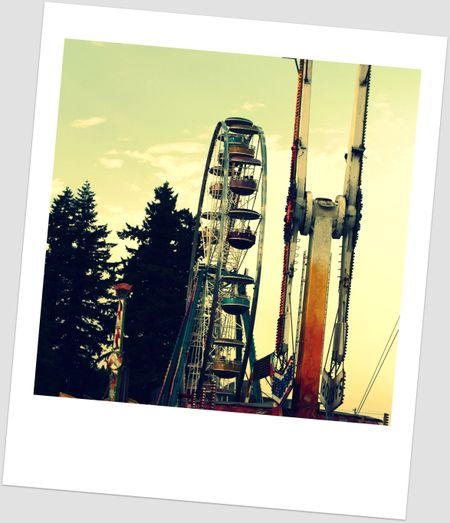 The_fair_cross_process