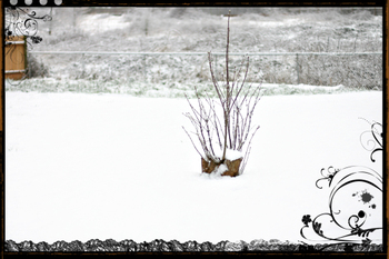 March_snow_storm_shot